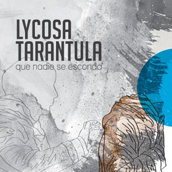 lycosa-tarantula-portada